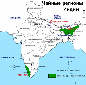 tea-production-india-map